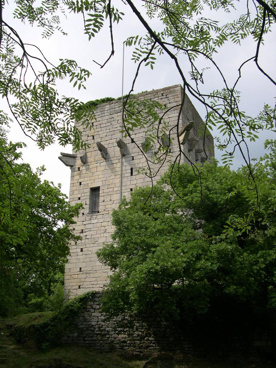 Château de Saint-Triphon en ruine.